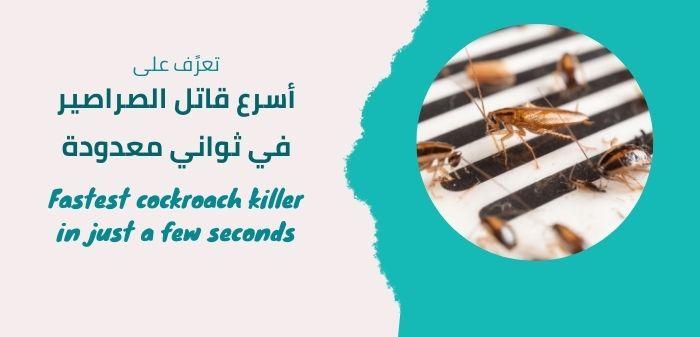 أسرع قاتل الصراصير في ثواني معدودة